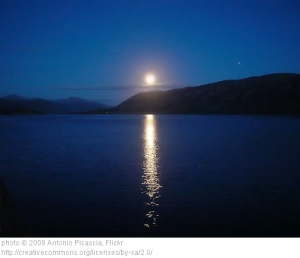 Moon Glade