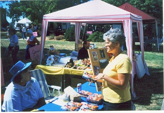 Fair in Holton, KS