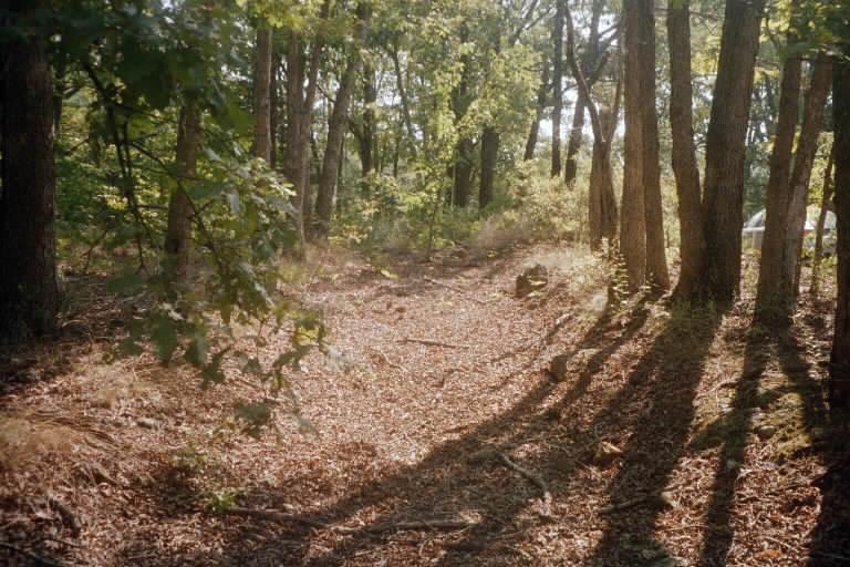 Butterfield trail